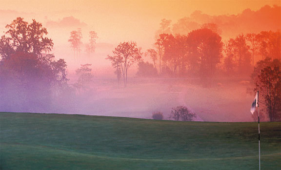 Stoneleigh Golf Club - Golf Courses, Ceremony Sites - 35271 Prestwick Ct, Round Hill, VA, 20141, US