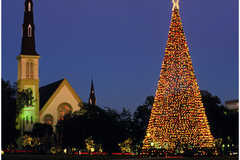 Marion Square - Attraction - 378 King St, Charleston, SC, 29403
