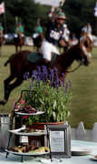 Saturday, June 26, 2010- 5PM  Polo Match & Tailgate - Polo Match - 715 E Main Rd, Portsmouth, RI, 02871, US