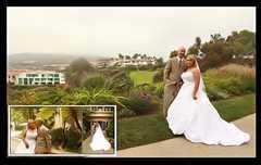 Ritz Carlton Laguna Niguel - Hotel - 1 Ritz-Carlton Drive, Dana Point, CA, United States