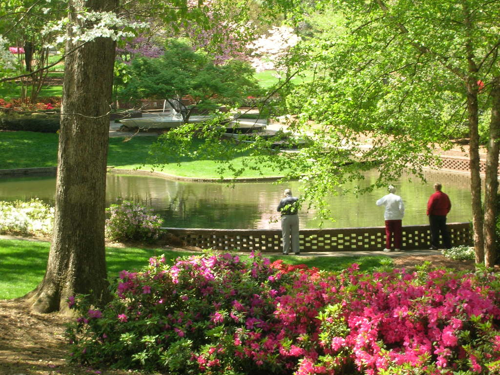 Glencairn Garden - Attractions/Entertainment, Parks/Recreation - 725 Crest Street, Rock Hill, SC, United States
