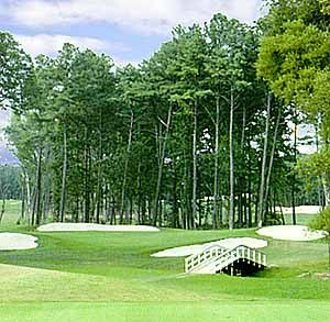 Hog Neck Golf Course - Attractions/Entertainment, Golf Courses - 10142 Old Cordova Rd., Easton, MD, 21601, USA