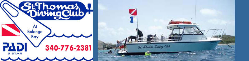 St. Thomas Diving Club - Attractions/Entertainment - Bolongo Bay Beach Resort, St. Thomas, U.S. Virgin Islands