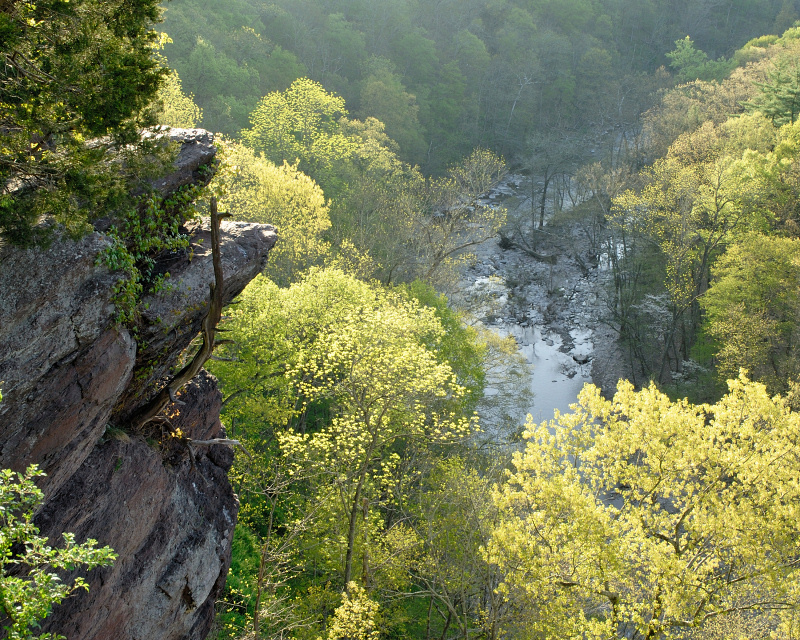 High Rocks At Ralph Stover State Park - Parks/Recreation - High Rocks State Park, Pipersville, Pennsylvania 18947, United States