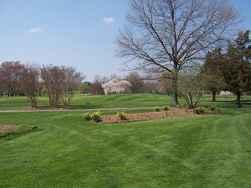 Rehearsal Dinner - Herndon Centennial Golf Course - Restaurants, Golf Courses - 909 Ferndale Ave, Herndon, VA, 20170, US