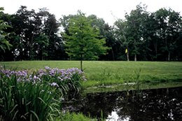 Brambleton Regional Park Golf Course - Golf Courses, Attractions/Entertainment - 42180 Ryan Rd, Ashburn, VA, 20148