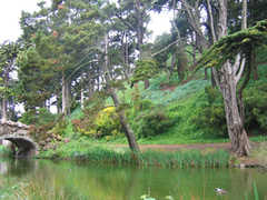 Golden Gate Park - Attraction - Golden Gate Park, San Francisco, CA, CA, US