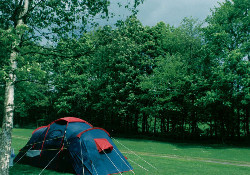 Hayfield Campsite - Campsites -
