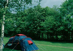 Hayfield Campsite - Camping -