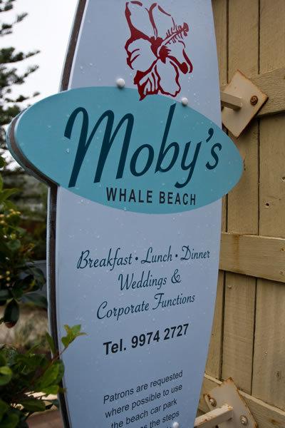 Wedding Venues Palm Beach County on Sites   227 Whale Beach Rd  Avalon  Nsw  Australia   Wedding Mapper