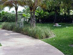 Ceremony - Earl Lifshey Park - Ceremony Sites - 3054 N Ocean Blvd, Fort Lauderdale, FL, 33308