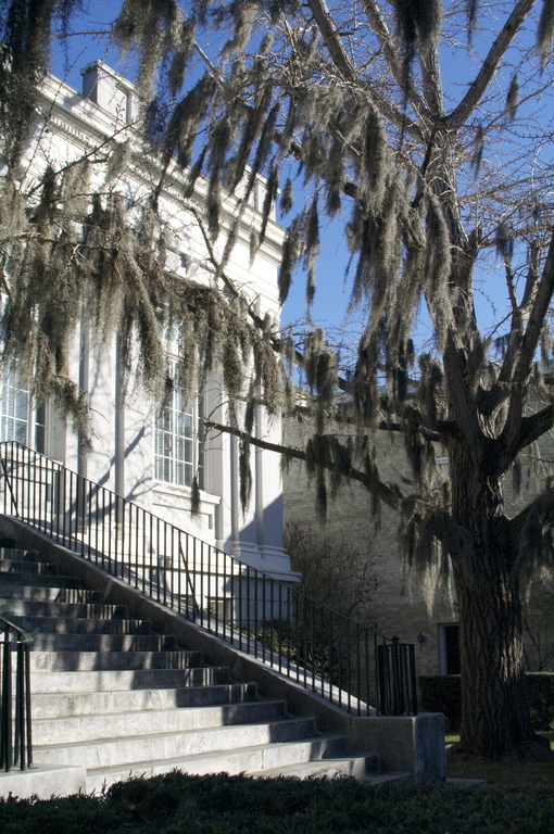 Charleston Library Society - Ceremony Sites - 164 King Street, Charleston, SC, United States