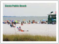 Siesta Beach - Beach - 5118 Ocean Boulevard, Sarasota, FL, United States