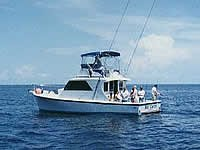 Flying Fish Fleet Deep Sea Fishing - Cruises/On The Water - 2 Marina Plaza, Sarasota, FL, United States