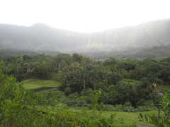 Luana Hills Country Club - Golf - 770 Auloa Rd, Kailua, HI, United States