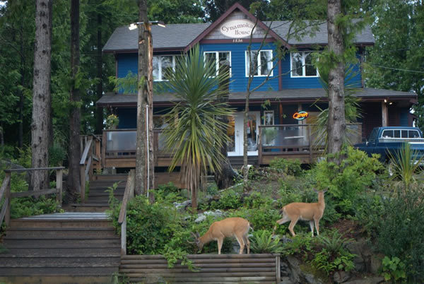 Cynamoka Coffee House And Guest Suites - Restaurants - 1536 Peninsula Road, Ucluelet, BC, Canada
