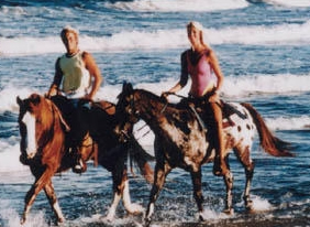Horses On The Beach - Attractions/Entertainment - 22 N Padre Island Dr, Corpus Christi, TX, 78408