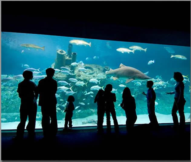 North Carolina Aquarium At Pine Knoll Shores - Reception Sites, Rehearsal Lunch/Dinner - 1 Roosevelt Boulevard, Pine Knoll Shores, NC, United States