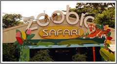 Zoobic Safari - Attraction - Morong, Central Luzon, Philippines