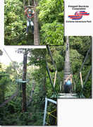 Extreme Adventure Park - Attraction -