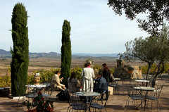 Viansa Winery - Ceremony - 25200 Arnold Dr., Sonoma, CA, 95476, USA