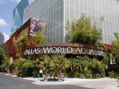 Dallas World Aquarium - Attraction - 1801 N Griffin St, Dallas, TX, United States