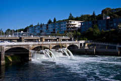 Ballard Locks - Attraction - 3015 Northwest 54th Street, Seattle, WA, United States
