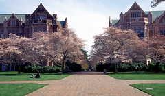University of Washington - Attraction - 1959 North East Pacific Street, Seattle, WA, United States