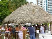 O'Leary's Tiki Bar and Grill - Restaurant - 5 Bayfront Drive, Sarasota, Florida, United States