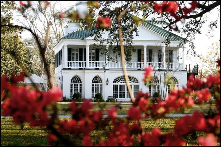 Lowndes Grove Plantation - Restaurants, Ceremony Sites, Attractions/Entertainment - 266 Saint Margaret St, Charleston, SC, 29403
