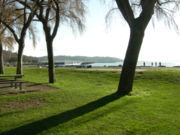 Golden Gardens Park - Reception Sites, Attractions/Entertainment, Parks/Recreation - Seaview Pl NW, Seattle, WA, United States