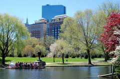 Boston Esplanade - Attraction - Public Garden, Charles St, Boston, MA
