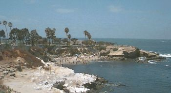La Jolla Cove - Beaches, Attractions/Entertainment, Shopping - 1100 Coast Blvd, San Diego, CA, 92037, US