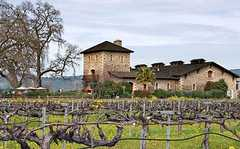 V. Sattui Winery - Ceremony/Reception - 1111 White Ln, Napa, CA, 94574, US