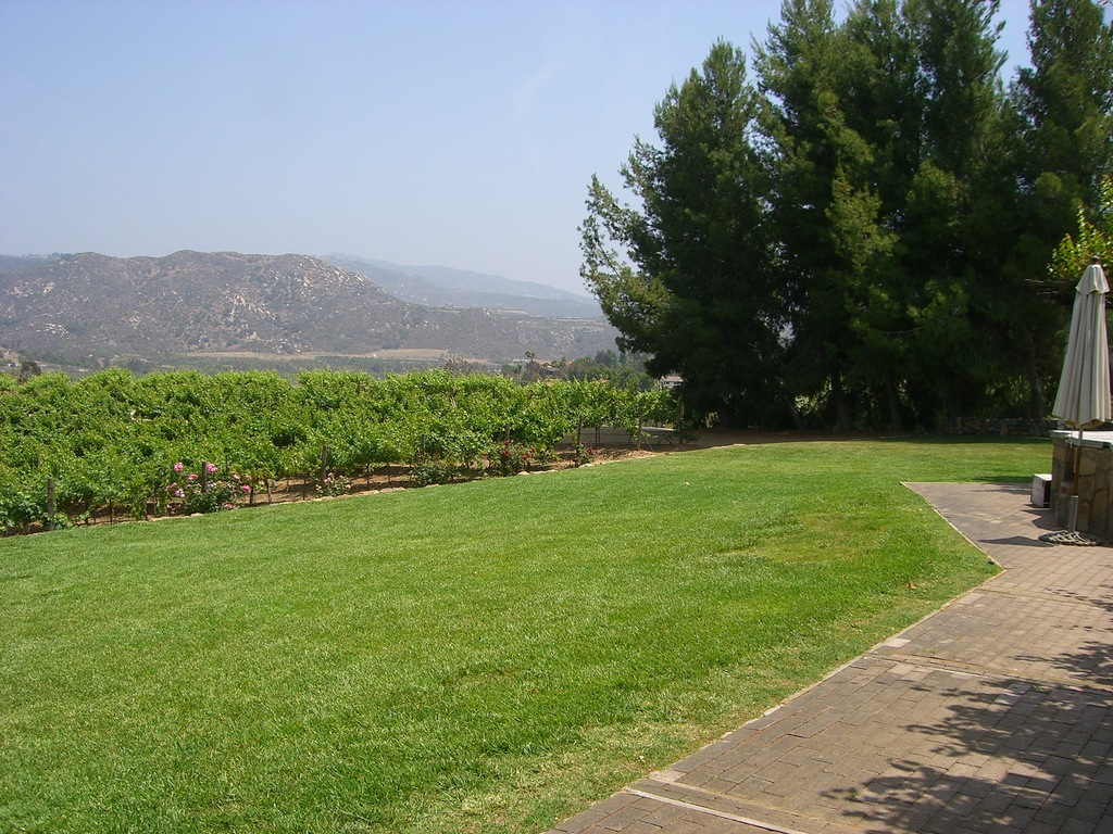 Orfila Winery - Ceremony Sites, Reception Sites, Attractions/Entertainment - 13455 San Pasqual Rd, San Diego, CA, 92025, US