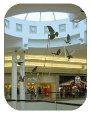 Dillard's: Woodland Hills Mall - Attractions/Entertainment, Restaurants, Shopping - 6919 S Memorial Dr, Tulsa, OK, United States