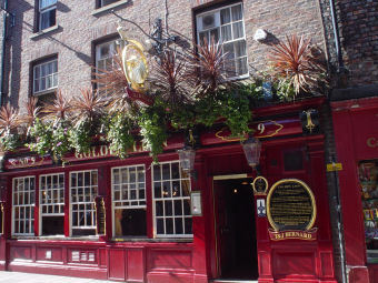 The Golden Lion Pub - Bars/Nightife -