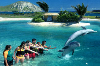Sea Life Park - Attractions/Entertainment - 41-202 Kalanianaole Hwy # 7, Waimanalo, HI, USA