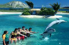 Sea Life Park - Attraction - 41-202 Kalanianaole Hwy # 7, Waimanalo, HI, USA