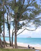 Waimanalo Beach - Beach -