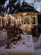 Rebecca  and Matthew's Wedding