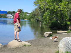 Spy Pond in Arlington - Attraction -
