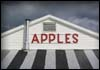 Golden Harvest Farms Inc - Attraction - 3074 U.S. 9, Valatie, NY, 12184, United States