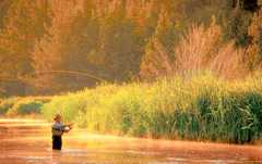 "Yakima River Fly Shop - ""Things To Do"" - 113 East 1st Street, Cle Elum, WA, United States"