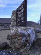 "Ginkgo Petrified Forest Interpretive Center - ""Things To Do"" - 4511 Huntzinger Road, Vantage, WA, United States"
