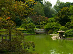 Brooklyn Botanic Gardens - Site Seeing - 1000 Washington Ave, New York, NY, 11225, US