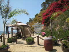 paradise cove - Restaurant - 28128 Pacific Coast Hwy, Malibu, CA, 90265, US