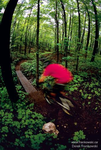 South Marquette Trails - Parks/Recreation -