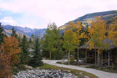 Betty Ford Alpine Garden - Nature - Ste 395, 183 Gore Creek Dr, Vail, CO, United States