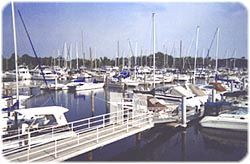 Marina Del Ray - Cruises/On The Water - 100 Marina Del Ray Drive, Mandeville, LA, 70471